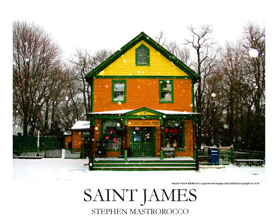 Saint James General Store Winter Print# 6618